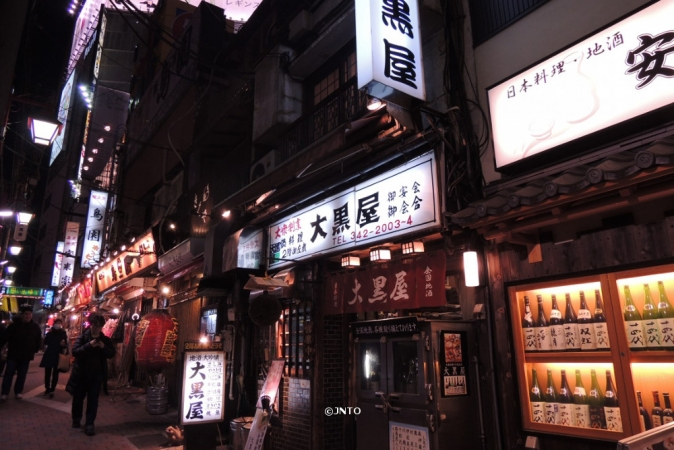 TOKYO, JIGOKUDANI E SHOPPING DI NATALE PARTENZE SPECIALI